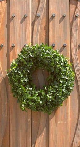 Large Ivy Wreath    The Large Ivy Wreath measures 17 inches in diameter and is grown on a secure mossed wire frame. This topiary is easily placed on a door or used as a centerpiece, on the dining room table, with some simple care. Upon arrival, we recommend submerging the ivy wreath in room temperature tub of water.    Note: Plants ship in the standard growers pot. Pictured decorations are concept ideas only. All measurements are approximate.     Ivy Topiary Care:     Prefers shade or ...