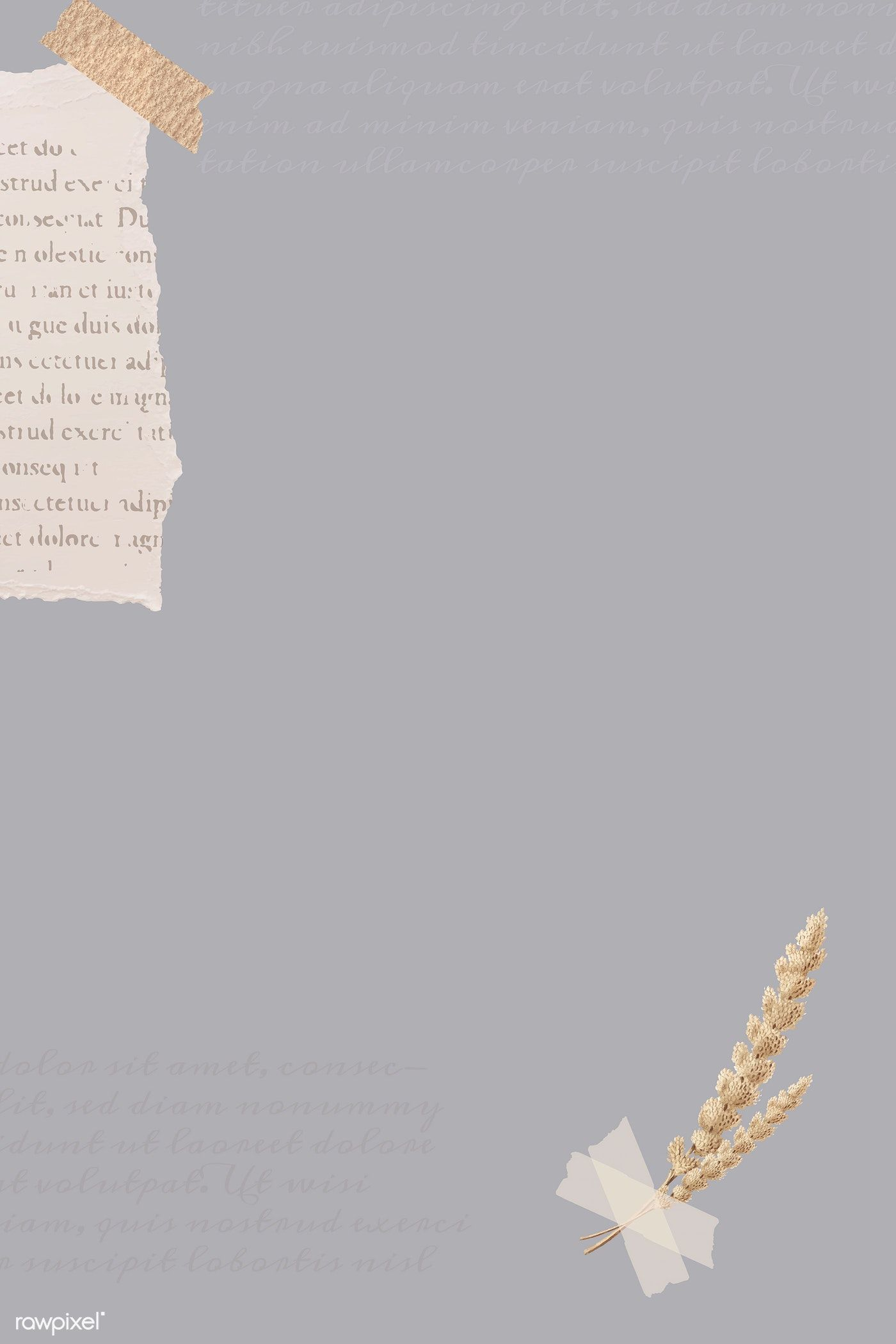 Download Premium Vector Of Ripped Newspaper And Flower Stem On Gray Banner Photo Collage Template Instagram Wallpaper Instagram Background