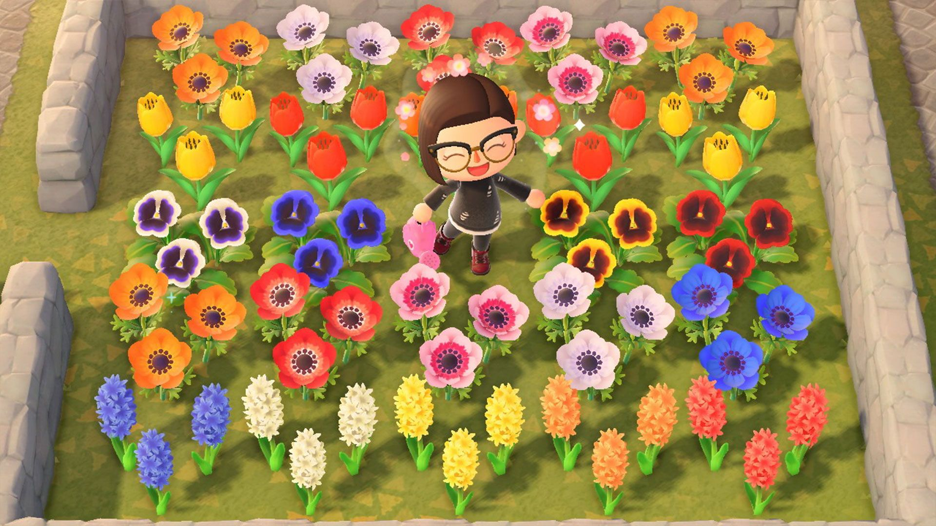 How To Create Hybrid Flowers In Animal Crossing New Horizons In 2020 Animal Crossing Types Of Flowers Grow Animals