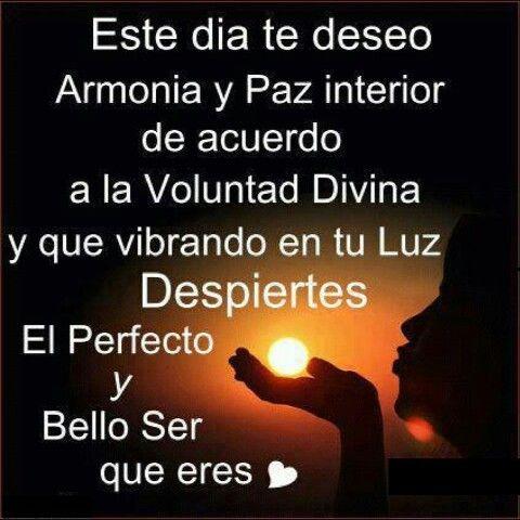 Armonia Amor Paz Reflexiones Pensamientos Frases Reflexiones