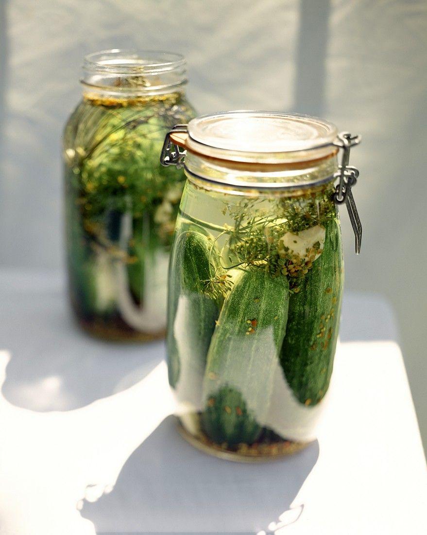 eingelegte gurken rezept gurken rezepte pinterest eingelegte gurken einlegen und einkochen. Black Bedroom Furniture Sets. Home Design Ideas