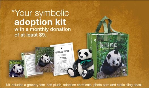 Your Symbolic Adoption Kit With A Monthly Donation Of At Least 9
