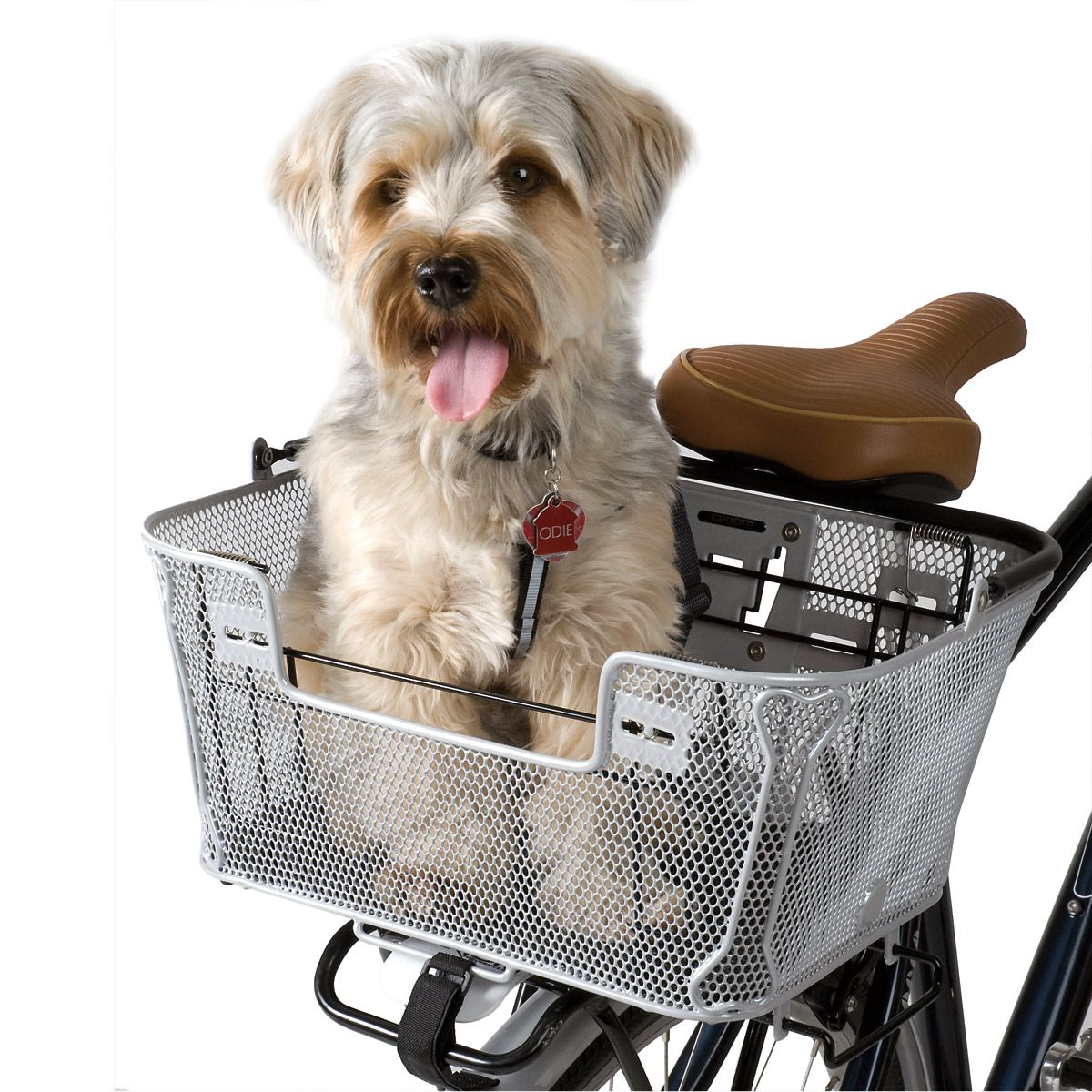 Axiom dog #bicycle dog basked $75 . Jump guard included.