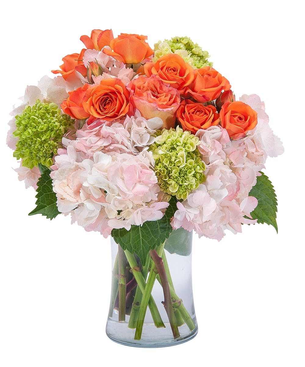 Beauty in blossom flower delivery birthday flowers