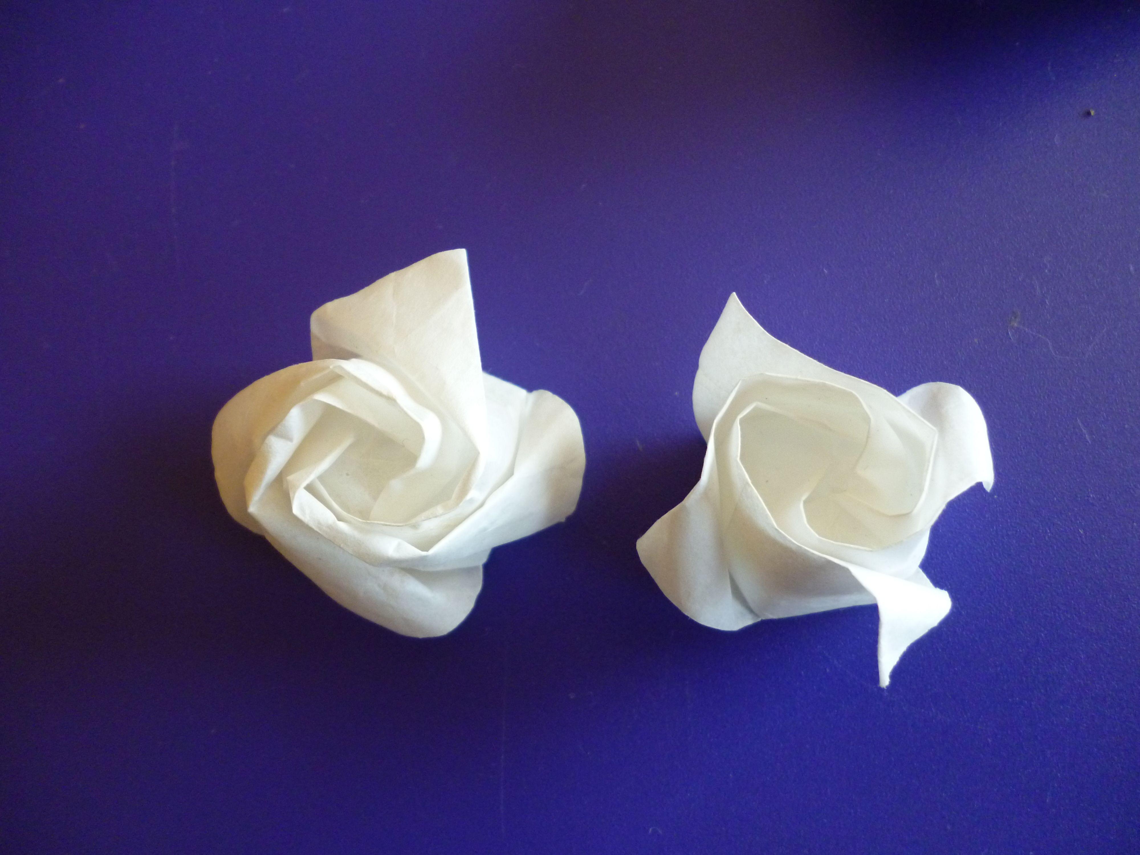 Tissue Paper Origami Roses Beautiful Effect But Very Fragile Rose Flower Diagram Rosebox