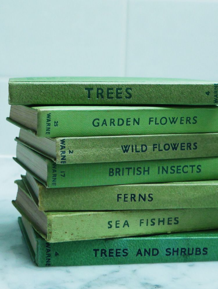 Image result for books aesthetic tumblr minimalism green