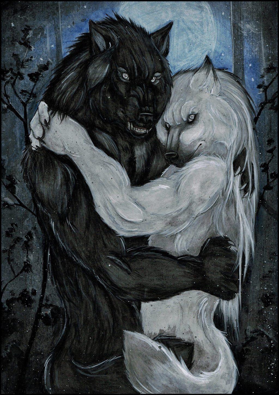 несмотря картинки парень и волк рисовать сошел, антихриста