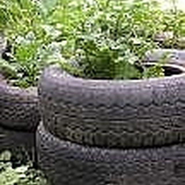 Growing Potatos In Tires