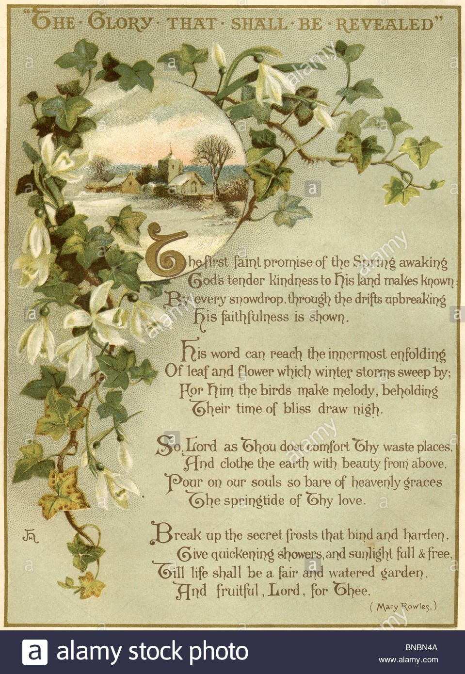 Download This Stock Image Poem With An Ivy And Snowdrop