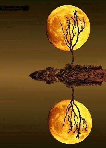 Orange moon reflected