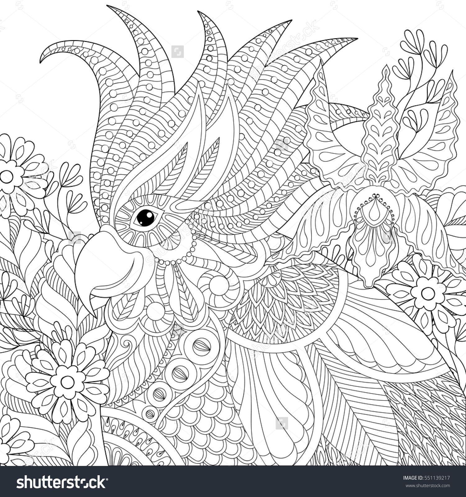 Adulte livre de coloriage zen mandalas volume 2 zentangle doodle art thérapie stress
