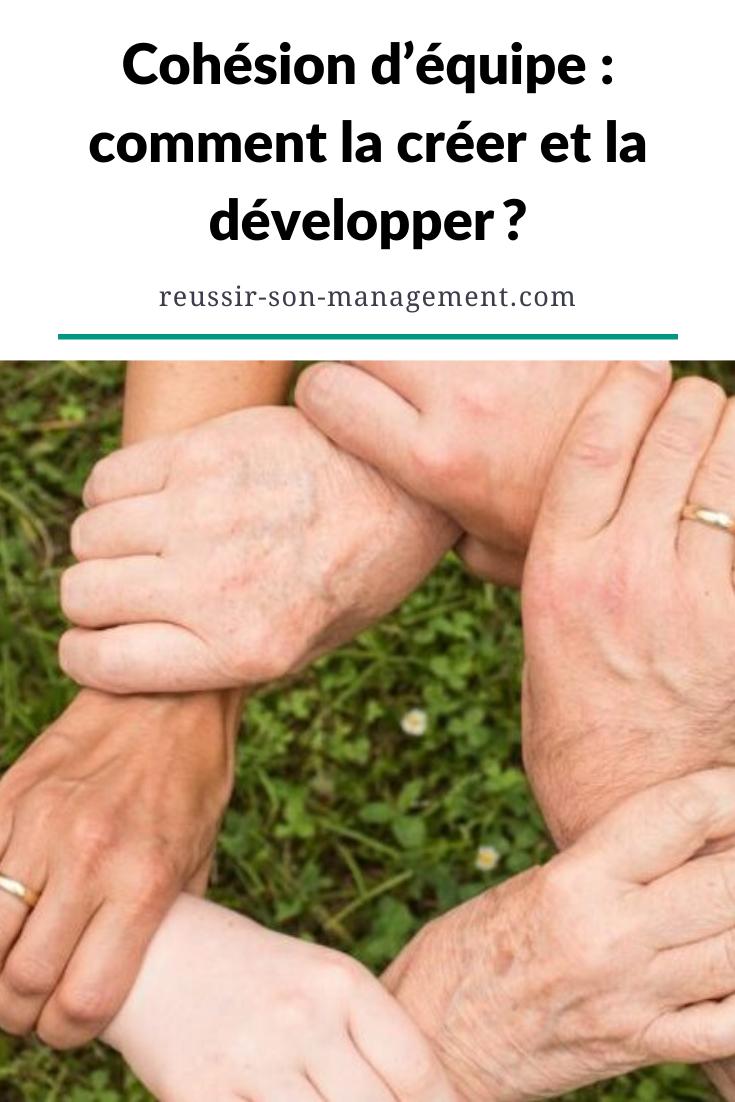 Cohesion D Equipe Comment La Creer Et La Developper Cohesion D Equipe Management Des Entreprises Dynamique De Groupe