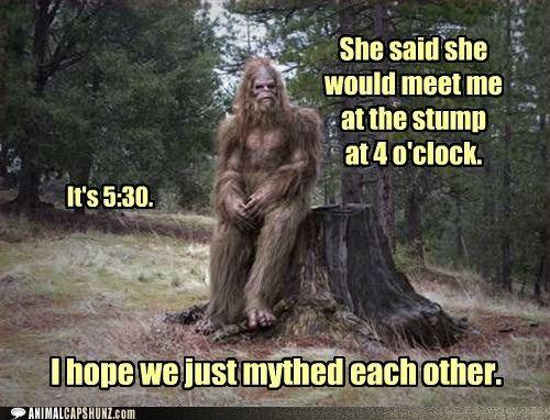 Funny Animal Captions - Emo-squatch. | Bigfoot humor, Bigfoot photos