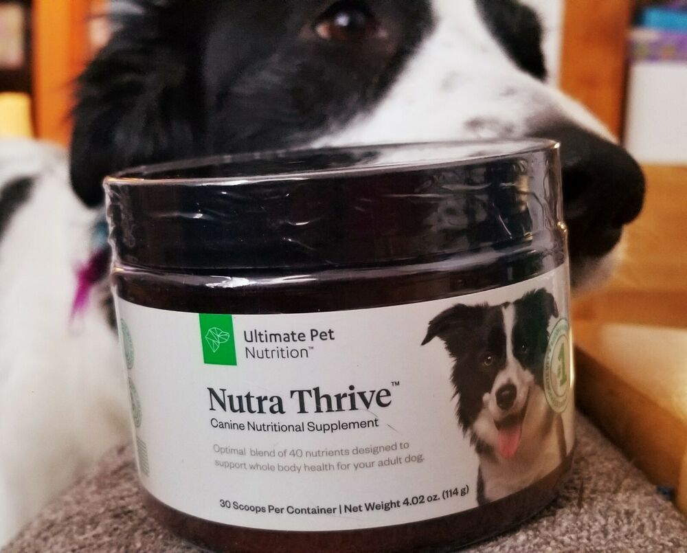 Nutra Thrive Canine Nutritional Supplement Factory Sealed Dog Pet