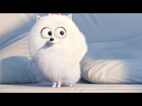 Max Gidget The Secret Life Of Pets Movie Clip Youtube Pets