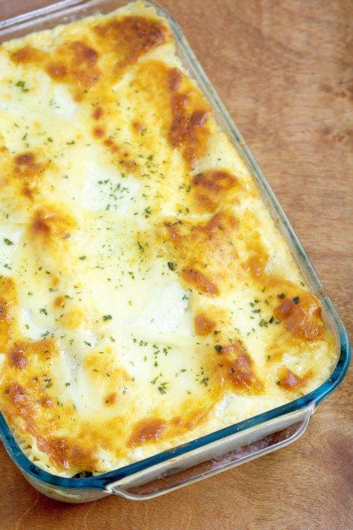 Chicken alfredo lasagna recipe homemade spinach and for Spinach chicken lasagna recipe