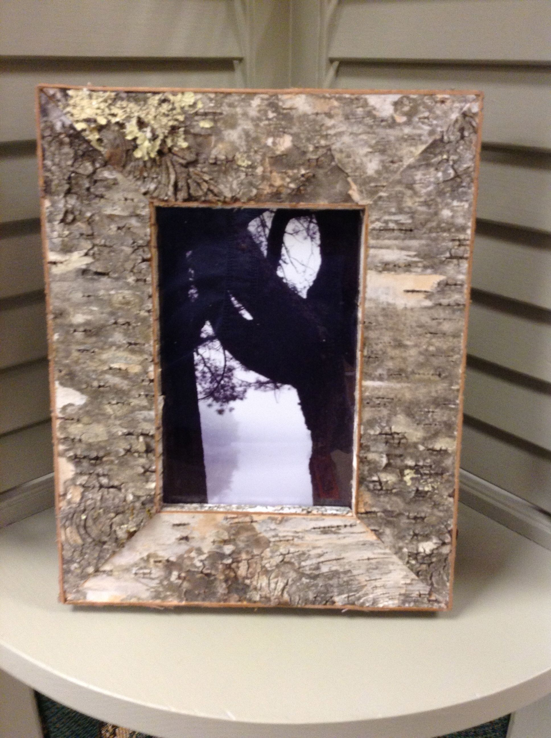 Birch Bark Glued To 34 Pine To Create A Picture