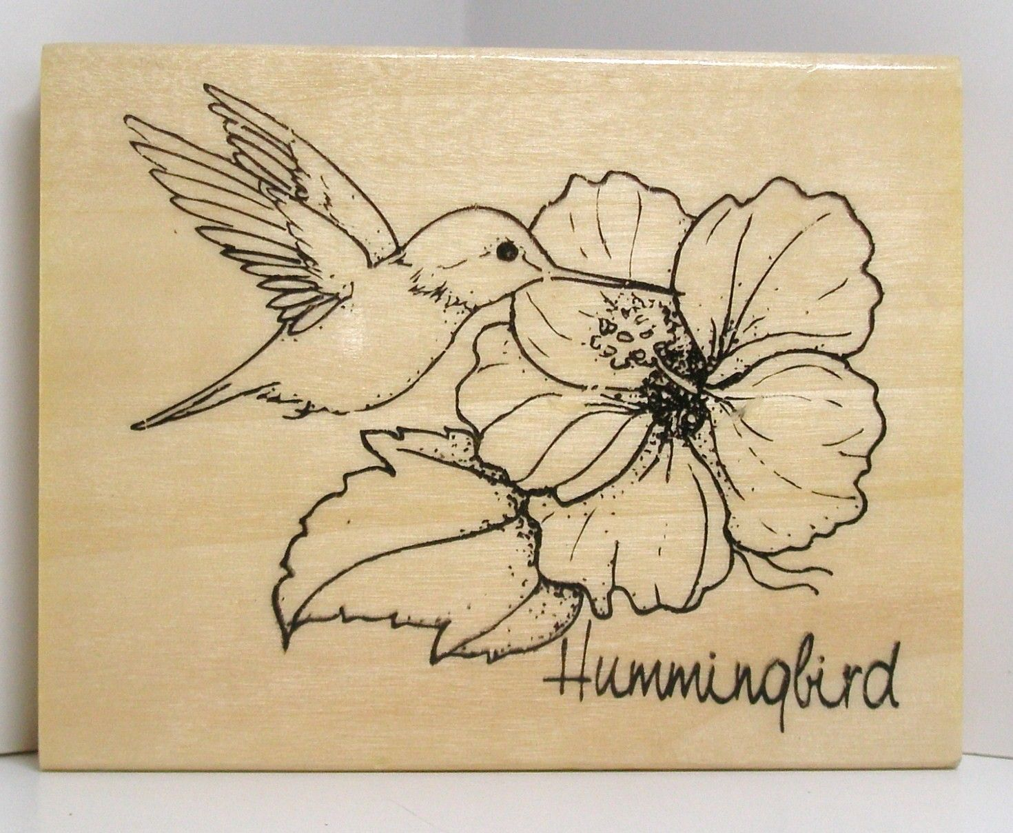 Hummingbird with hibiscus flower rubber stamp d ssins - Dessin d hibiscus ...