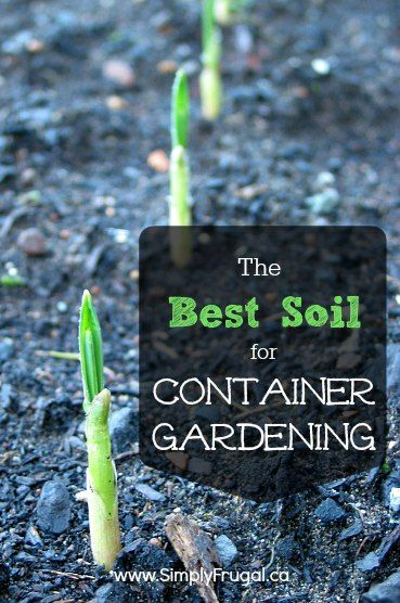 The Best Soil for Container Gardening Gardens Container