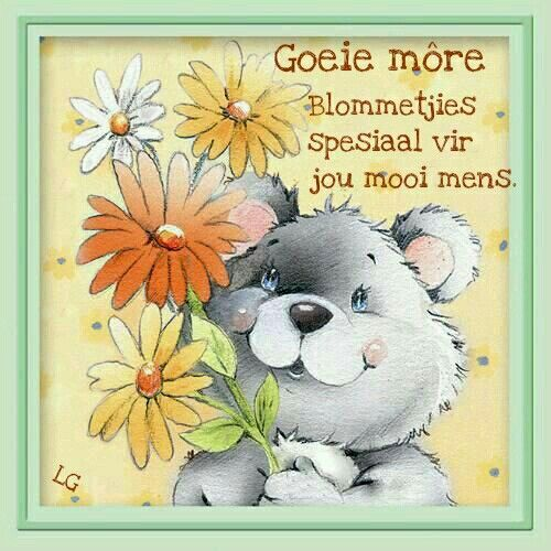 Pin by lize grobler on afrikaans pinterest bear images greeting card illustrations birthday card design morning blessings christmas greeting cards happy birthday cards post card m4hsunfo Images