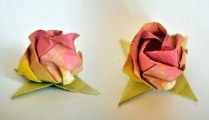 Rosa de Kawasaki - link em Foto Diagrama