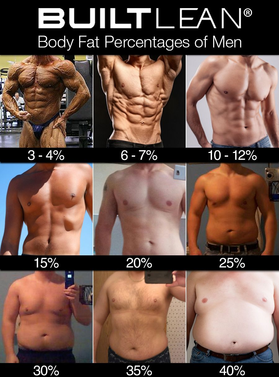 "The 15% body fat level is usually within the ""lean and fit"" category in most body fat percentage charts. Description from builtlean.com. I searched for this on bing.com/images"