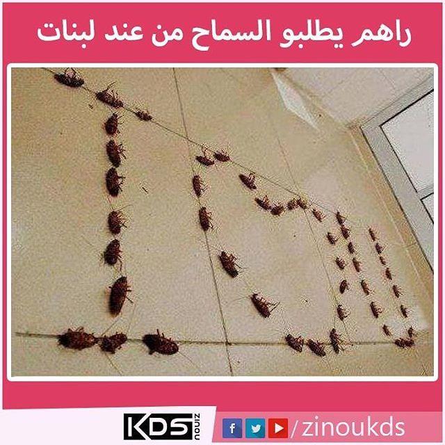 Regardez Cette Photo Instagram De Zinou Kds 2 592 Mentions J Aime Instagram Instagram Posts Cross Necklace