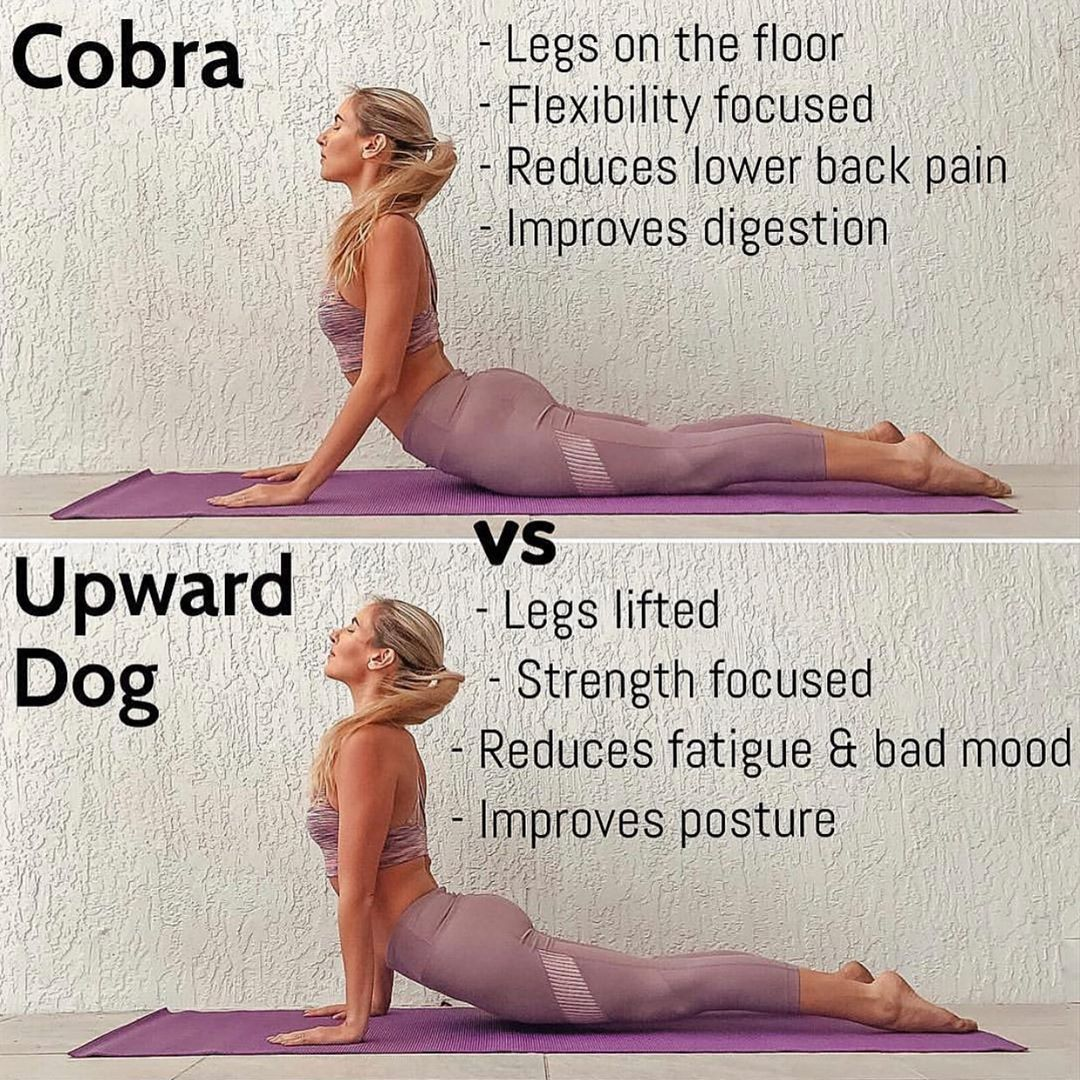Cobra Pose Bad For Back