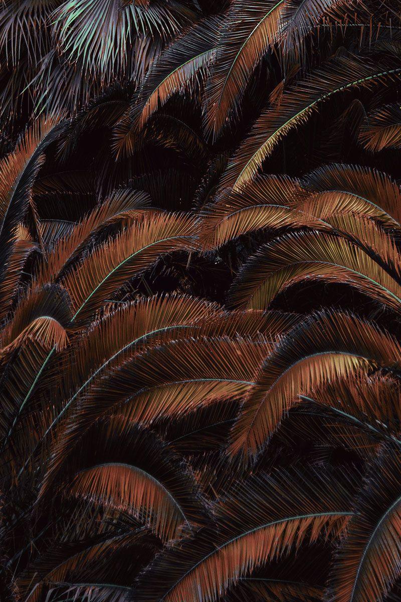 Aesthetic Wallpaper Dark Brown Aesthetic Background