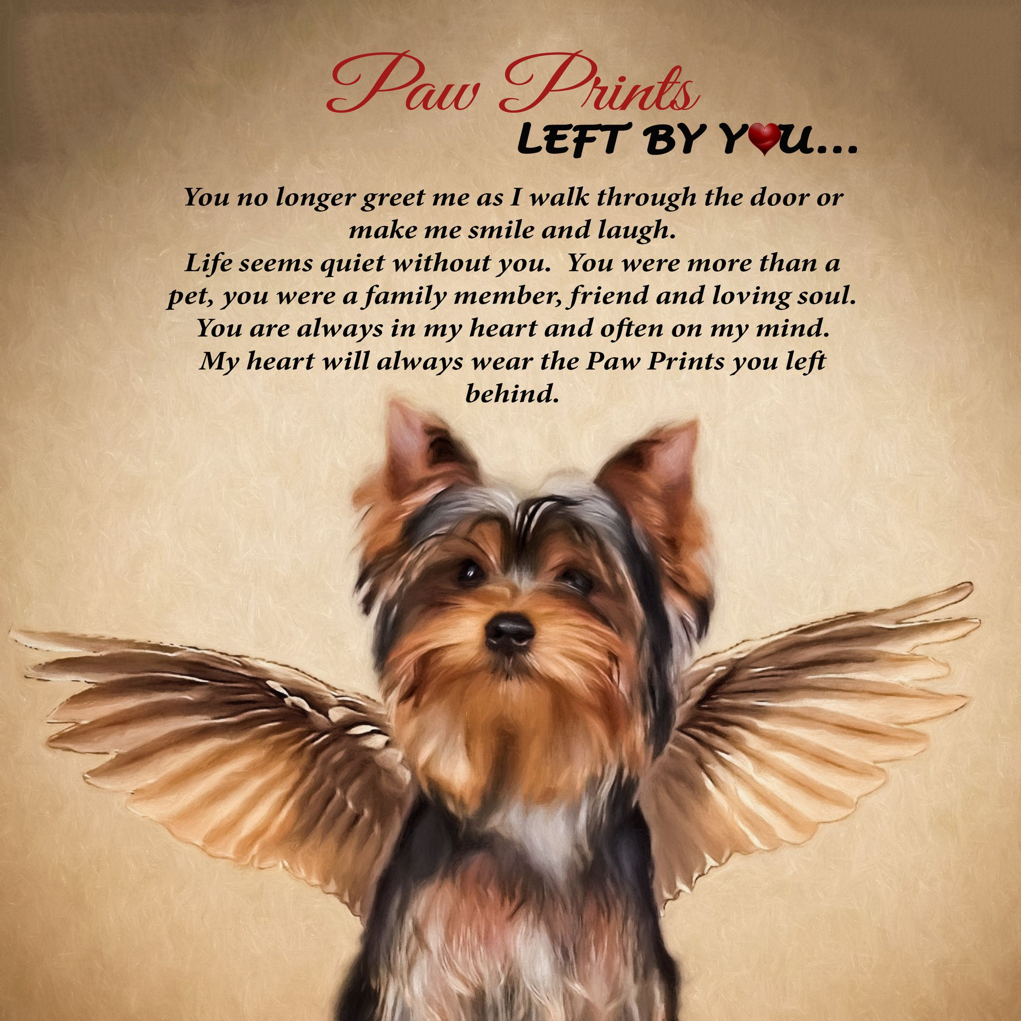angel paw print yorkie plaque photo wall smooth and yorkies
