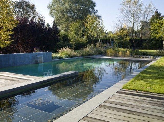 Piscine naturelle PISCINA Pinterest Swimming pools
