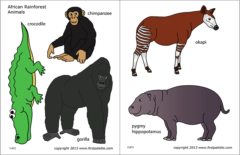 photo regarding Printable Rainforest Animals named African Jungle or Rainforest Pets Absolutely free Printable