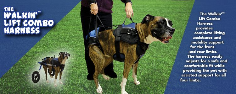 Walkin Lift Combo Dog Harness Dog Harness Pets Harness