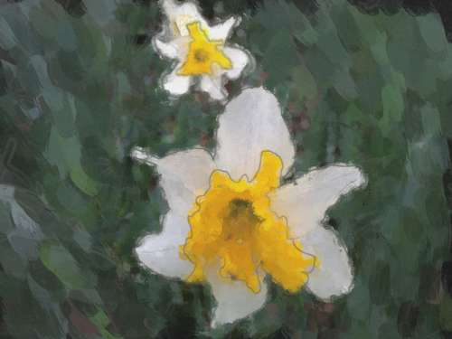 Daffodils done with ArtistsTouch