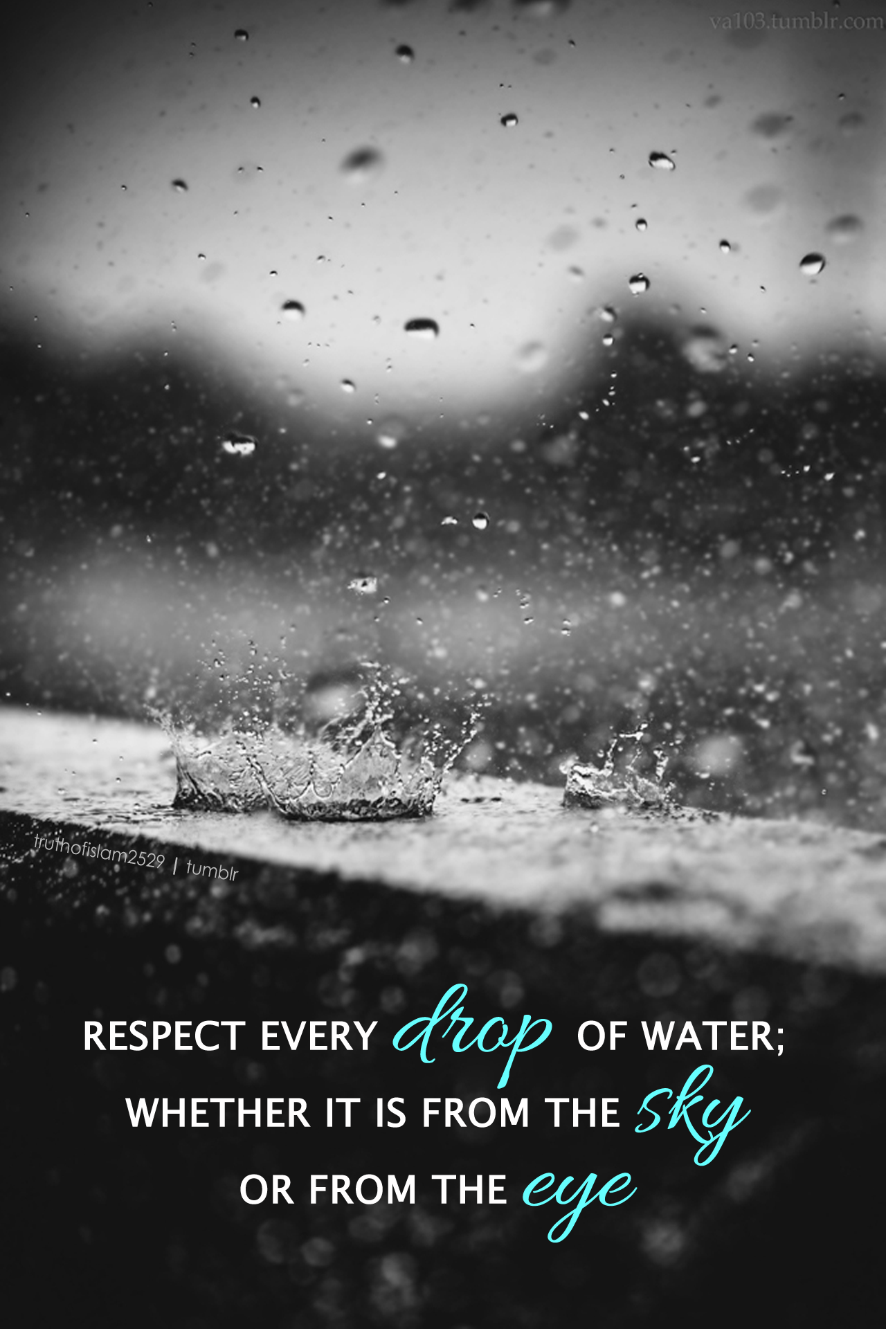 Respect Every Drop Of Water Whether It Is From The Sky Or From The