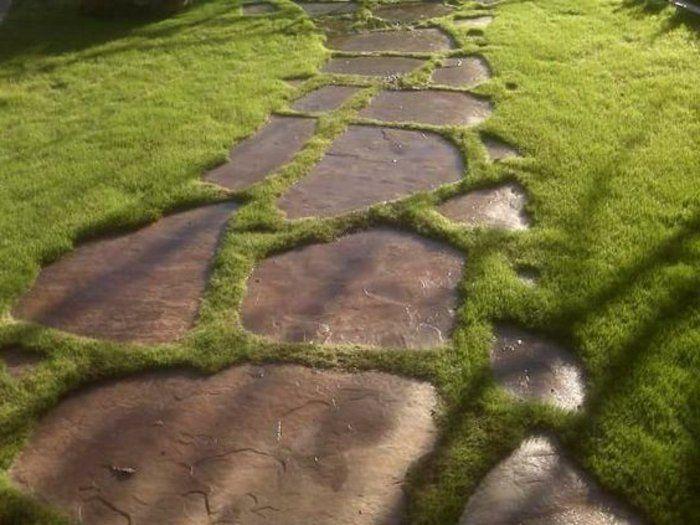 Faire Une Allée De Jardin Avec Grands Pierres De Jardin, Pelouse Verte