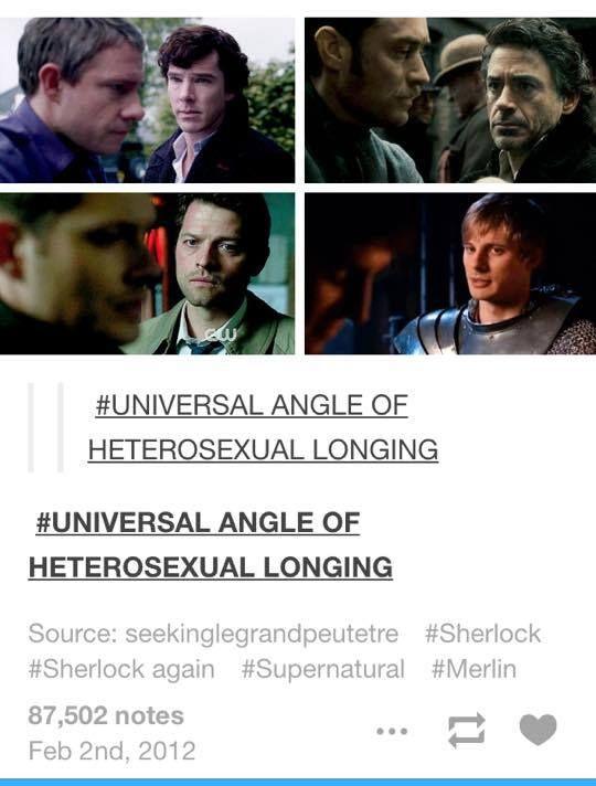 Heterosexual life partners
