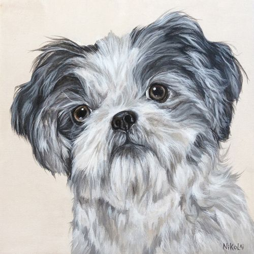 Dog Art Portrait Painting Of Millie Shih Tzu By Artist Carolyn