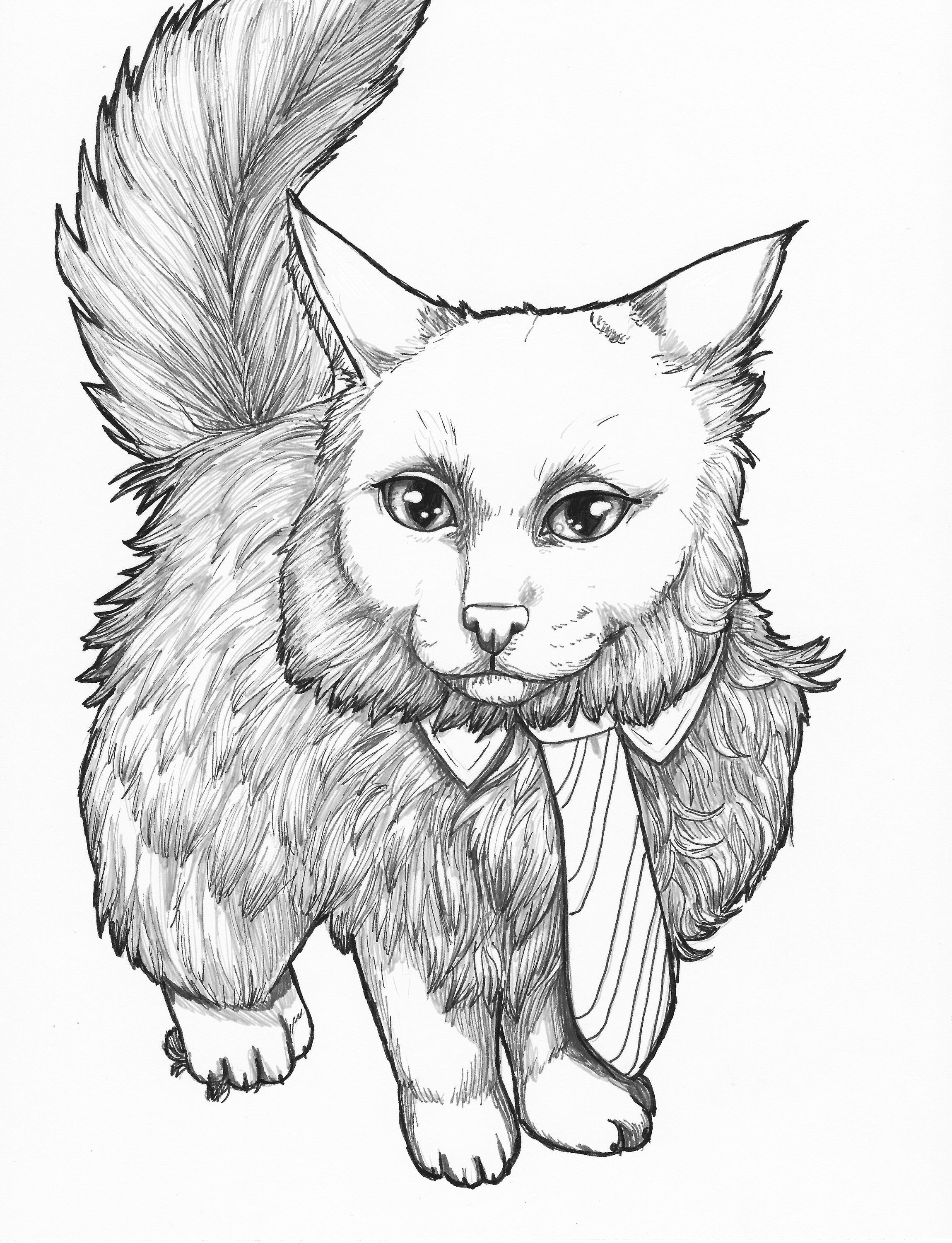 Line art animal printable cat coloring page adult coloring page