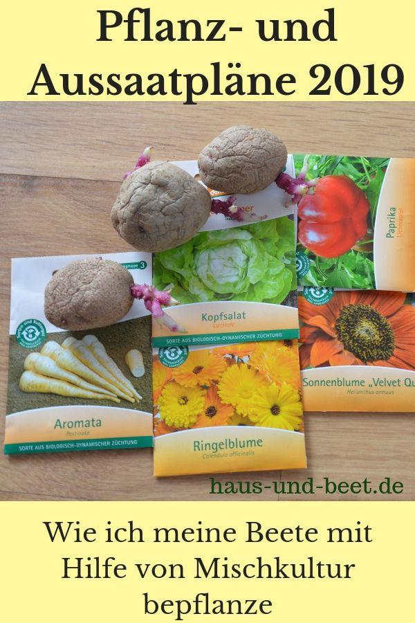 Pflanz- und Aussaatpläne 2019 mit Hilfe von Mischkultur - Haus und Beet #gemüsepflanzen