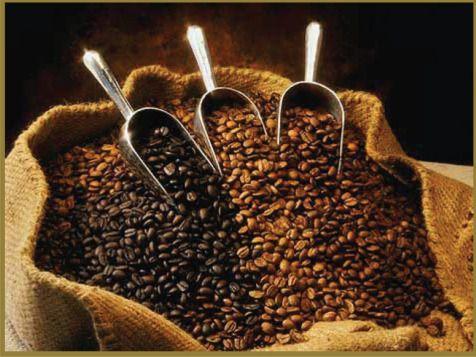 7 Fakta Tentang Indonesia Yang Mendunia Organic Coffee Beans Quit Coffee Organic Coffee
