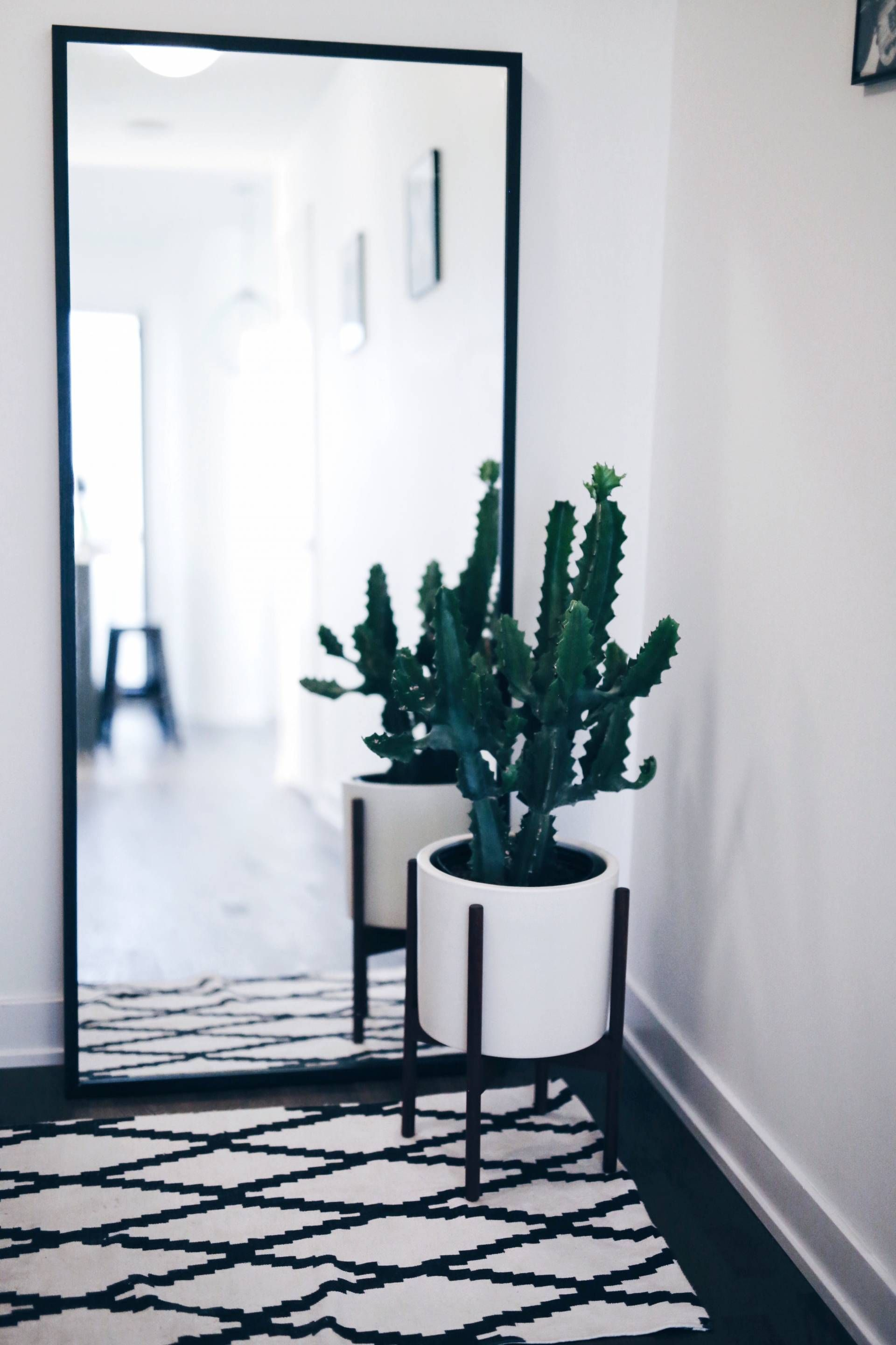 Modern white planter with cactus geometric rug living for Full length mirror in living room