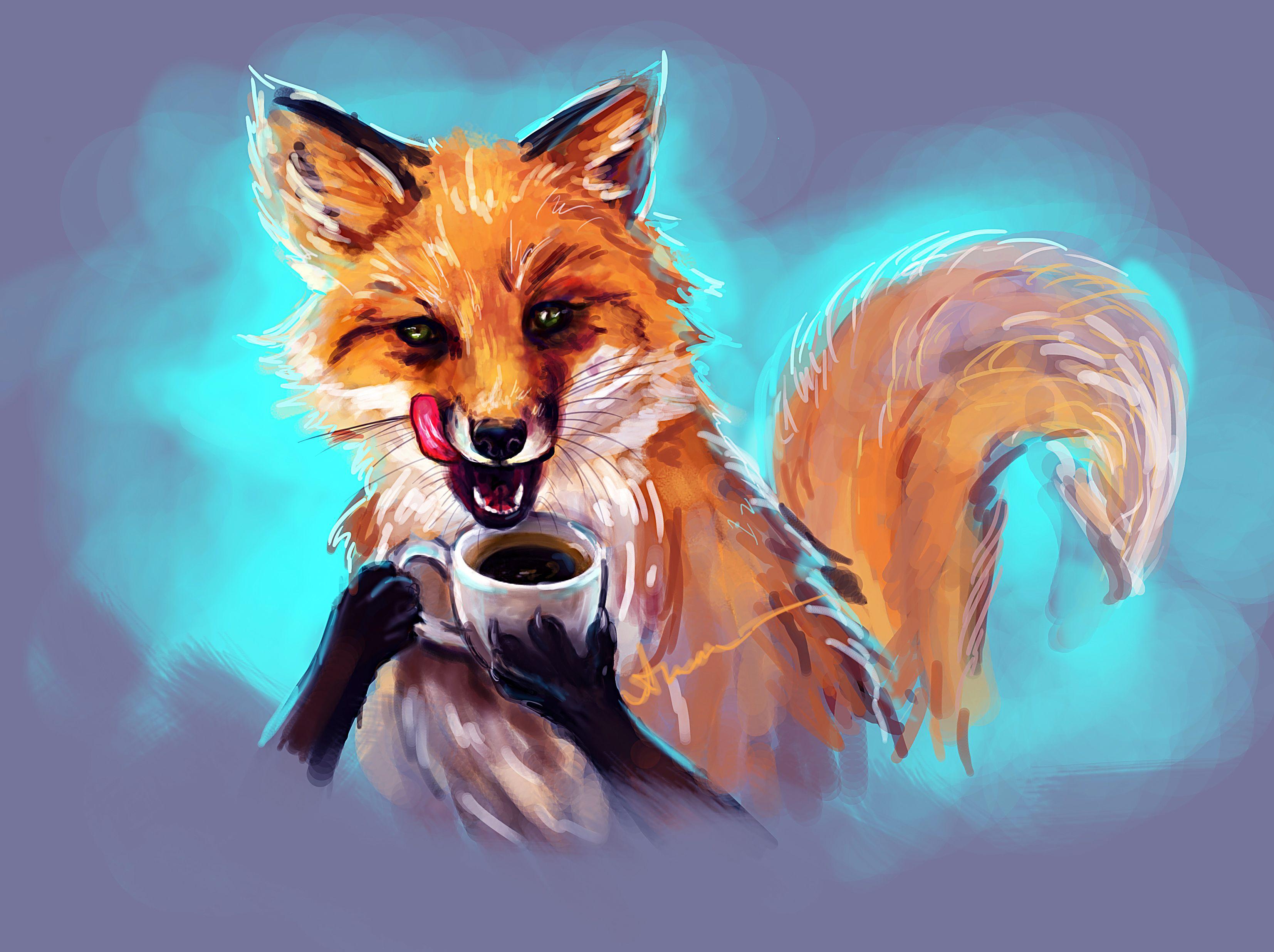 Обои Fox. Лисы foto 6