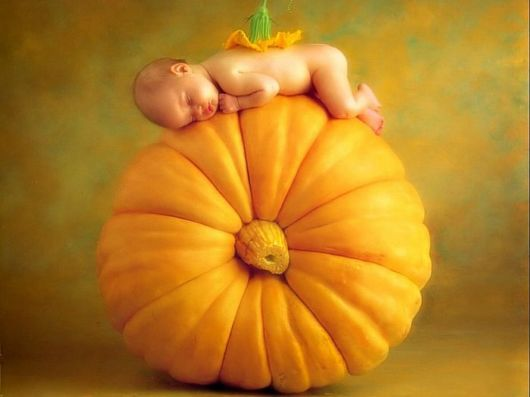 Anne geddes baby photography
