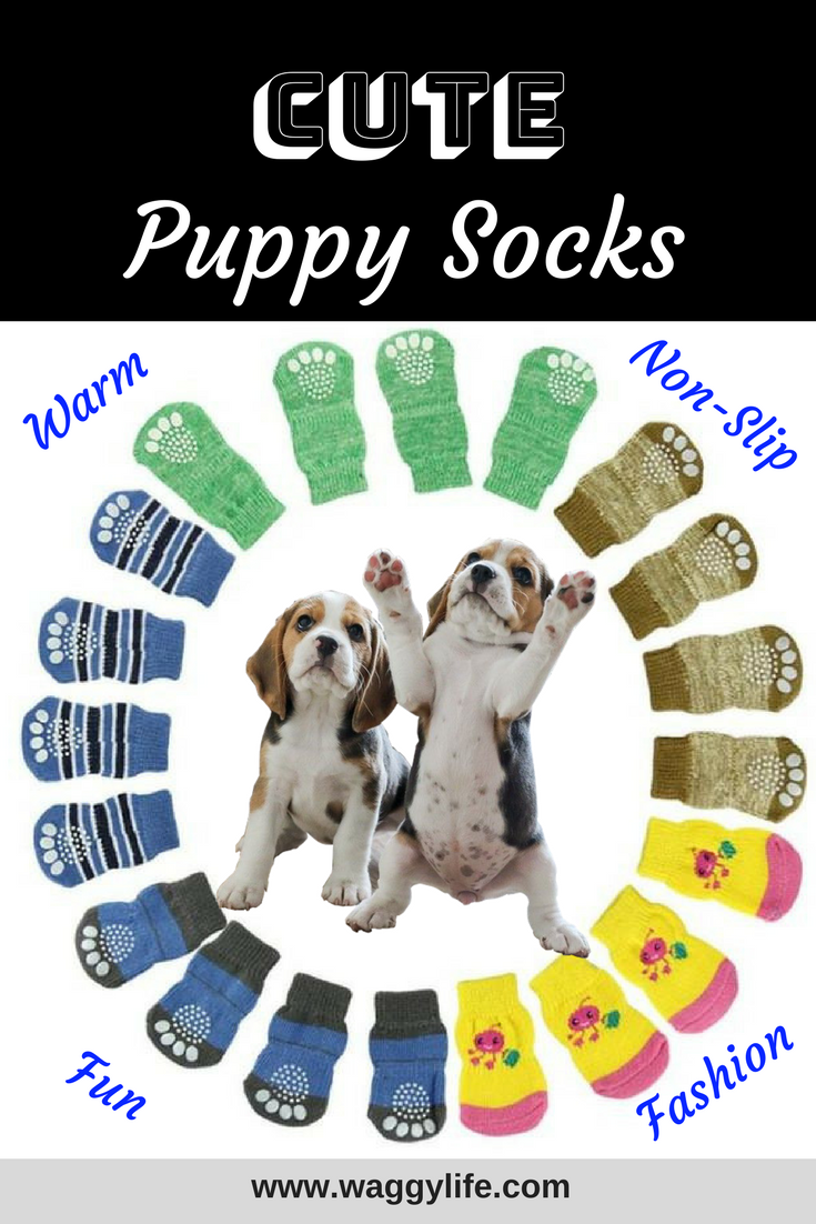 Cute Puppy Socks. Fashion idea for your pup. Warm with a