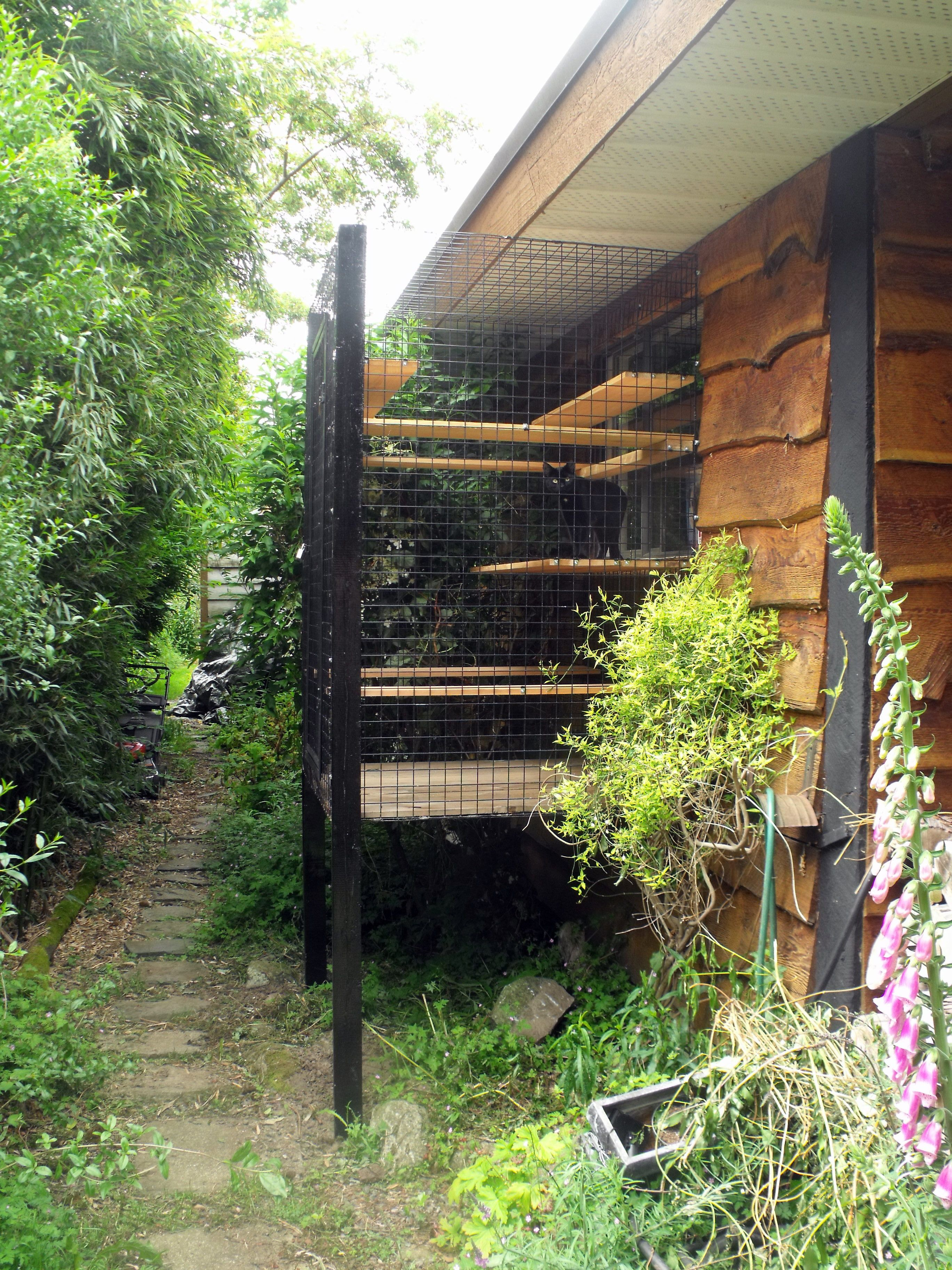 Attractive Outdoor Cat Enclosure Beautiful World Living Environments Www.abeautifulwor.