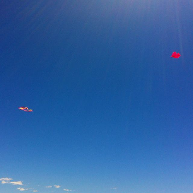 Papalotes en el cielo!!