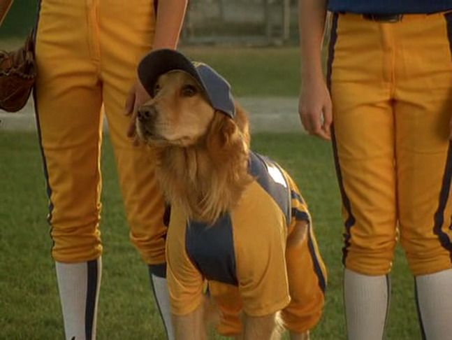 air bud 4 - seventh inning fetch (2002)