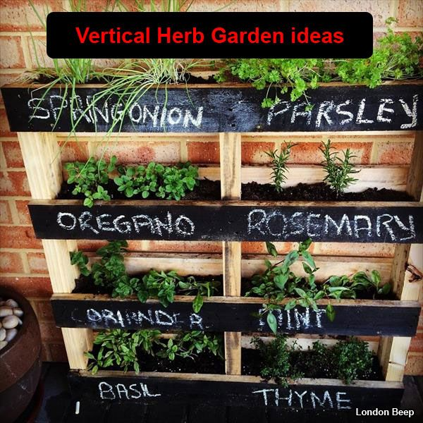 Beautiful Vertical Garden Ideas: 20 Beautiful Diy Vertical Herb Garden Ideas 2015