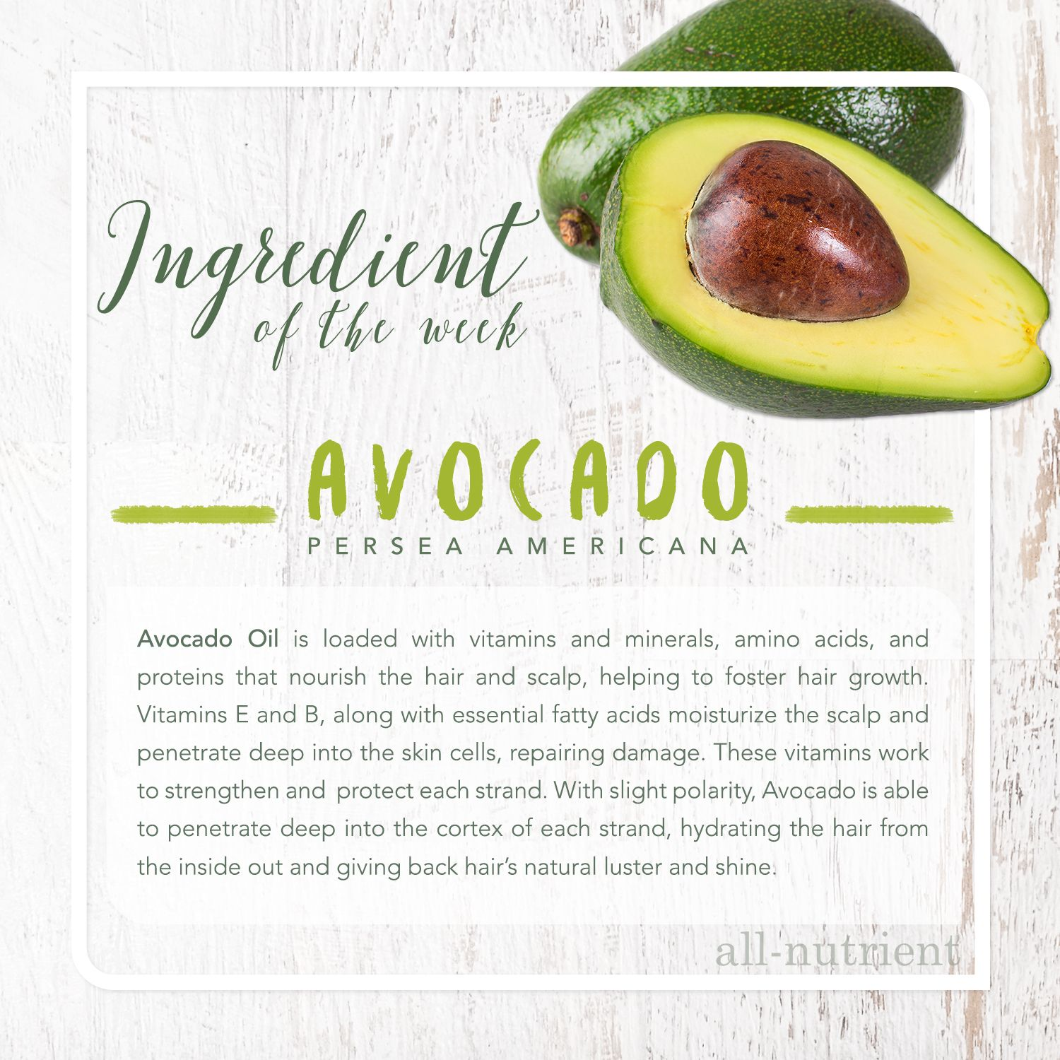 Loaded with vitamins and minerals to nourish your hair and scalp! #IngredientoftheWeek #Avocado #AvocadoOil